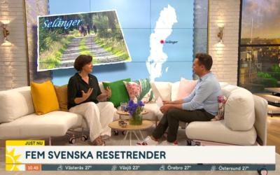 Uppmärksammas i TV4!